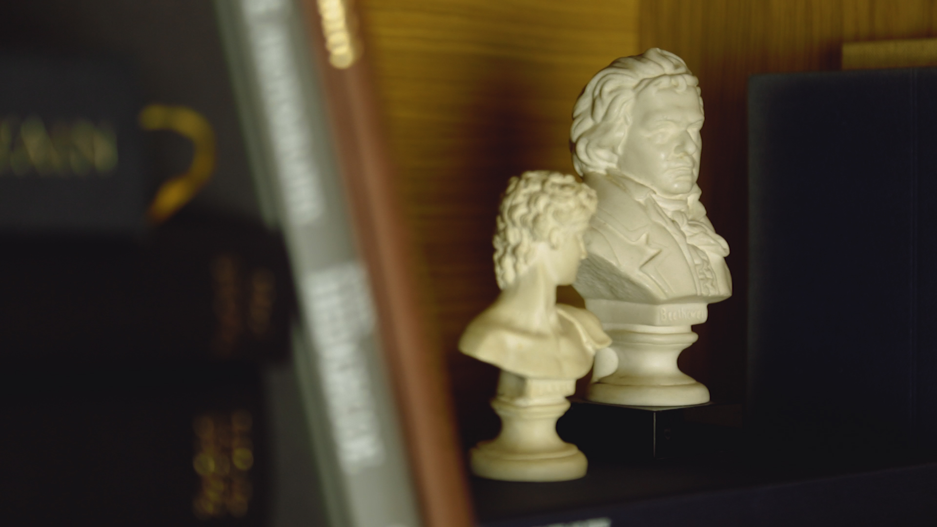 beethoven-video-learning-resources